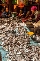 Fish Preparation at Market (Cambodia)