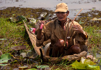 Man Harvesting Lotus Plants (Cambodia)