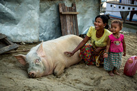 Mother & Child with Hog (Myanmar)