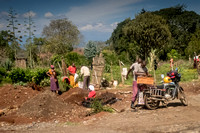 Roadside Farm to Market (Kenya)